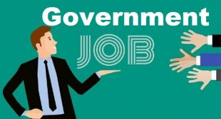 The Best Government Jobs after 12th Passed